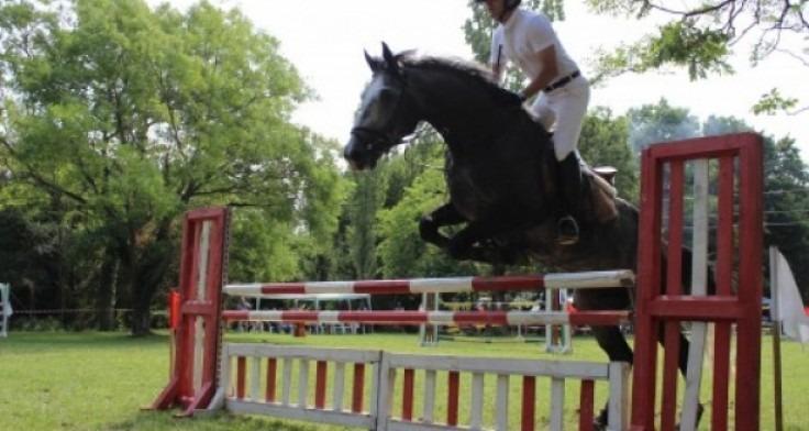 Организират турнир по конен спорт в Ботаническата градина край Варна