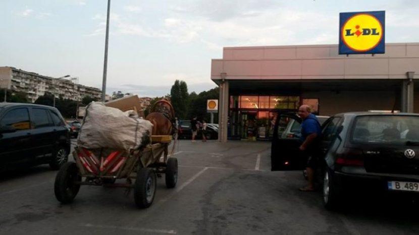 2 каруци задържаха горските стражари във Варненско