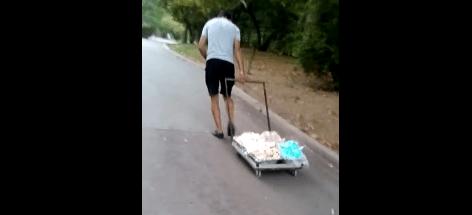 Как се транспортира сладолед в морската градина (видео)
