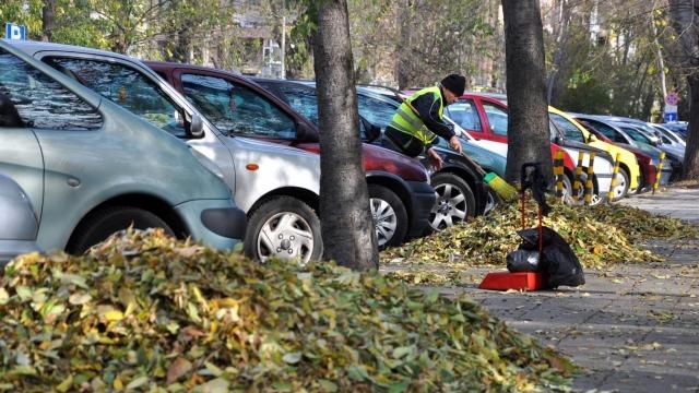 Eсенни листа опитват да затрупат Варна (снимки)