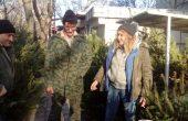 Първите живи елхи за Коледа се появиха във Варна, интересът е голям!
