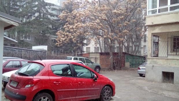 Снегът над Варна се усили, започна да побелява