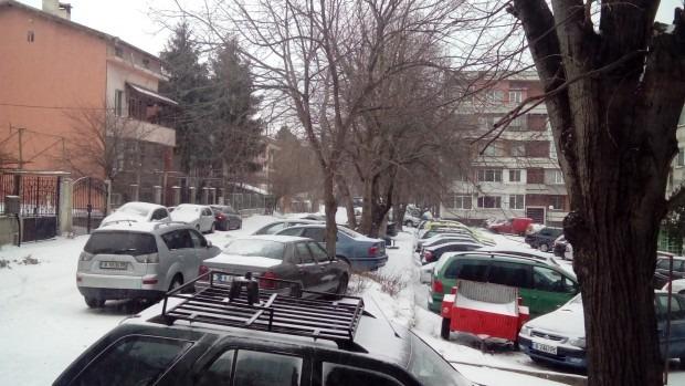 Варна посреща Нова година в бяло