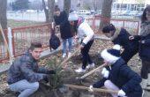 Варненски деца спечелиха 100 дръвчета за училището си