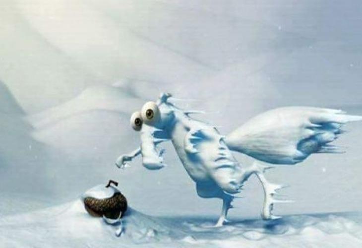 Хапливи бъзици със снега и студа сгорещиха мрежата (СНИМКИ)