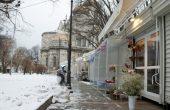 Студът прибра цветарите (снимки)