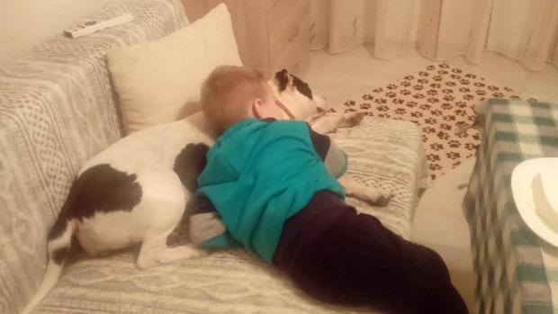 Варненка избухна: Кучето ми не обича други кучета, къде да го разходя? Глобиха ме три пъти!