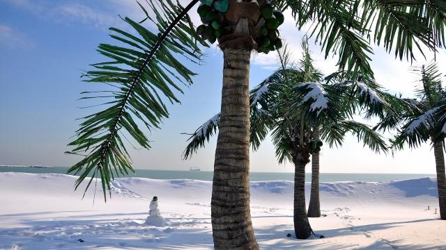 Снежното очарование на варненския плаж