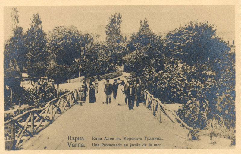 Варна може да има музей на Антон Новак