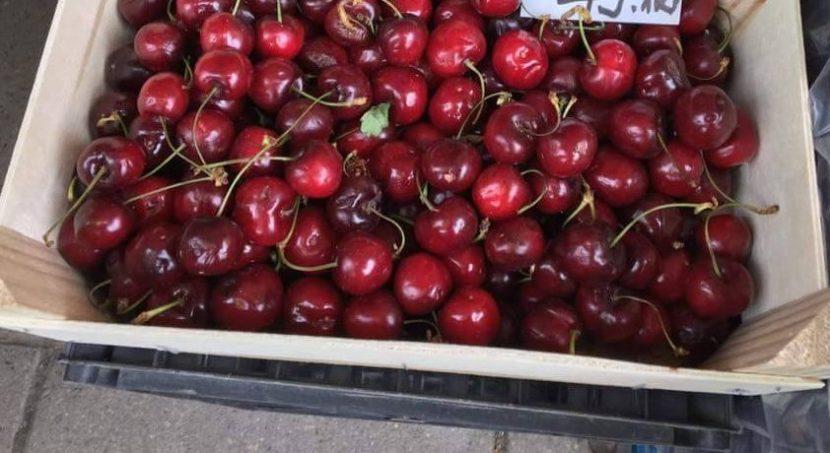 Рекордно висока цена за килограм череши във Варна (снимка)