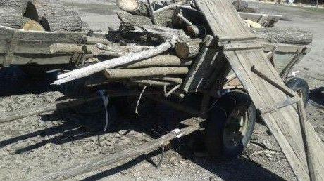 Бус и каруца задържаха горските във Варненско