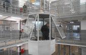 Счетоводителка от НОИ-Варна влиза в затвора за документни измами