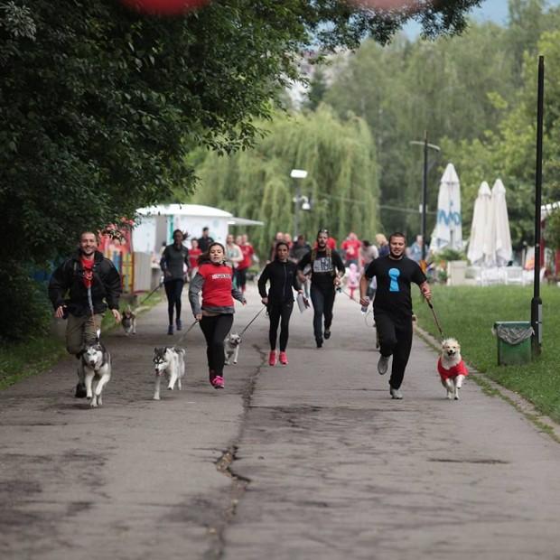 Във Варна ще се проведе първият маратон за кучета и техните стопани