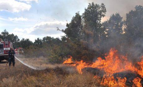 Осем горски пожара изгориха 134 дка гори във Варна и съседните региони