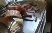 БАБХ с 3000 извънредни проверки по Черноморието, унищожават 933 кг храни