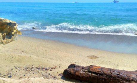 Водата по Черноморието в пъти по-чиста от миналата година