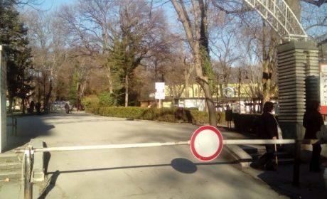 1035 нарушения на шофьори в Приморския парк от 1 май до днес