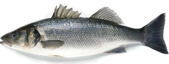 Има ли отровна риба на българския пазар?