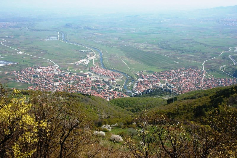 Десетки декари с тополи ще бъдат залесени край Варна