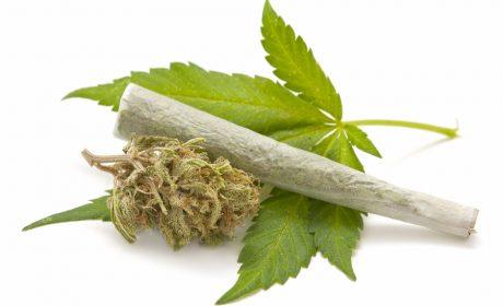 Задържаха 20-годишен за притежание на марихуана