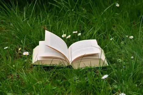 Инициатива във Варна събира книжки за бесарабски българчета