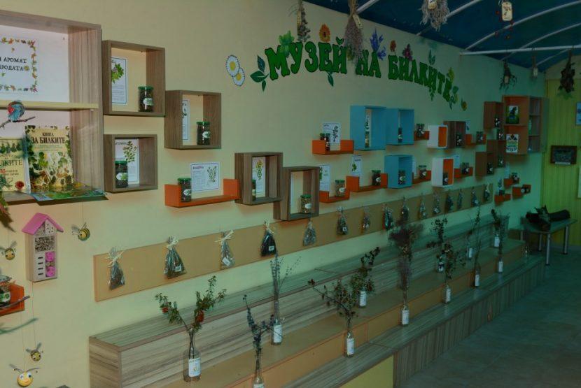 Откриха музей на билките в детска градина