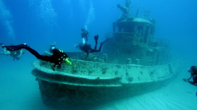 Привличаме туристи с подводни маршрути в Черно море