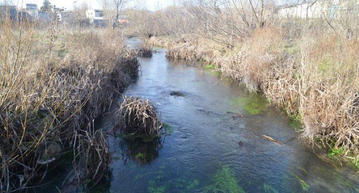 Защо изчезнаха раците от река Девненска?
