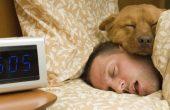 Как да заспим за 1 минута
