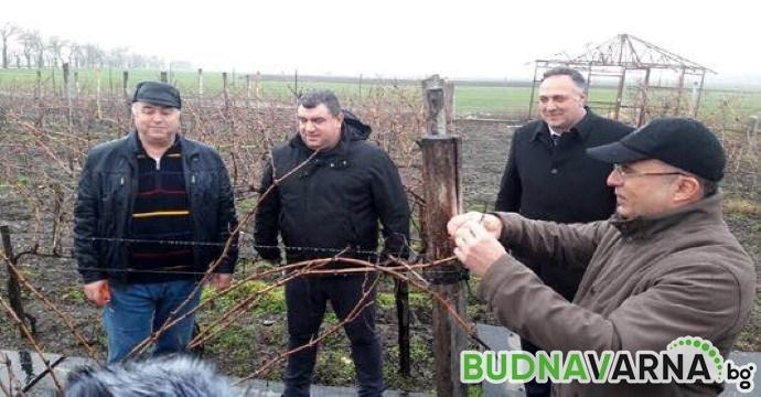 Румен Порожанов: България изнася 64 млн. литра вино годишно