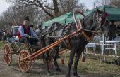 Отлагат отбелязването на Тодоровден в конна база Виница