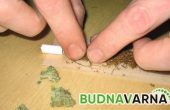 Иззеха различен вид наркотици от апартамент в Девня