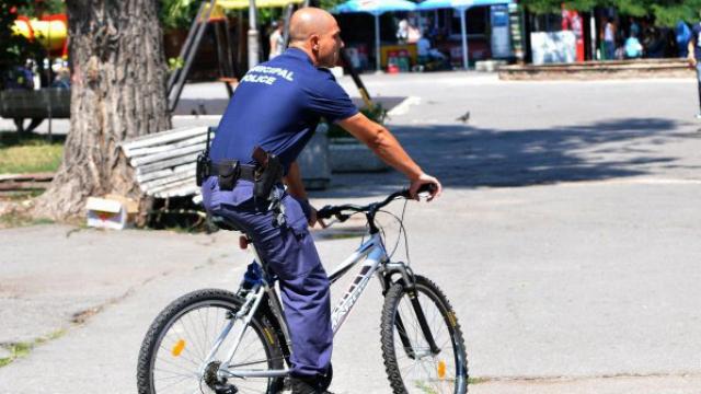 Румънски и полски полицаи ще патрулират през лятото