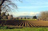 Създават ученическо опитно земеделско поле край Варна