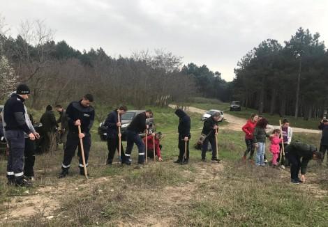 Навръх Цветница засадиха 1000 фиданки край Варна