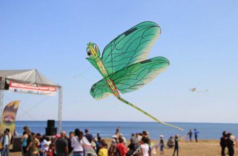 Отново Фестивал на хвърчилата