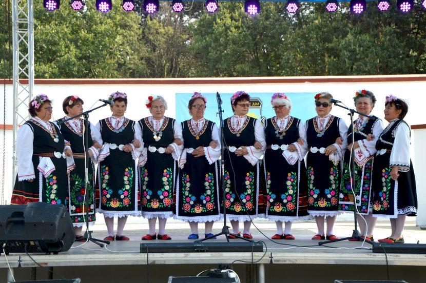 Богата програма зарадва жителите на Вълчи дол за празника на града (снимки)