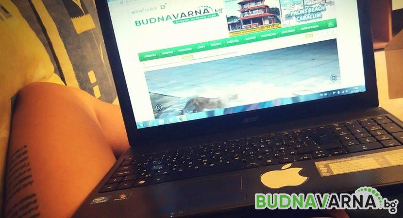 94% от българските деца са всеки ден в Интернет