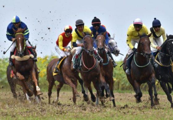 Конни състезания откриват празничната седмица в Белослав