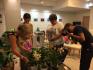 Търг на колекционерски орхидеи организират във Варна