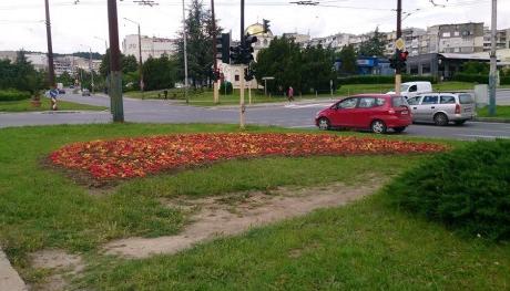 "Пролетен фестивал ще зарадва варненци от район ""Владислав Варненчик"""