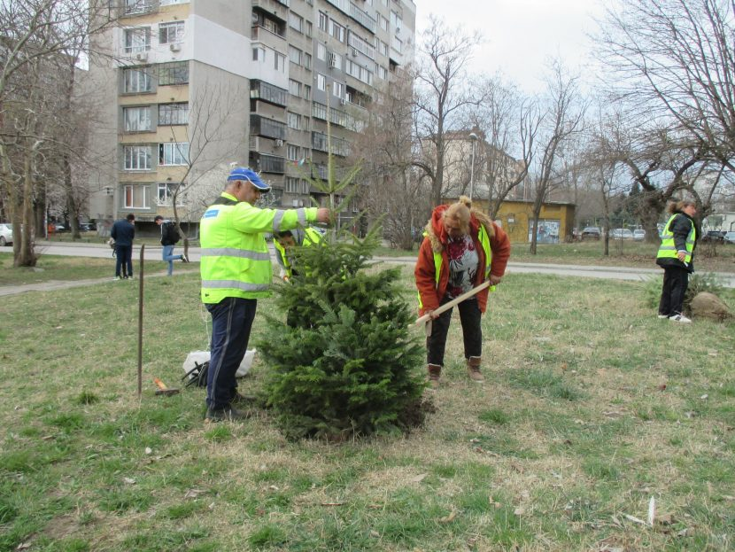 """Пролетното засаждане на дървета и храсти на територията на Район """"Приморски"""" е в разгара си (снимки)"""