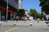 Емоджита превзеха центъра на Варна (СНИМКИ)