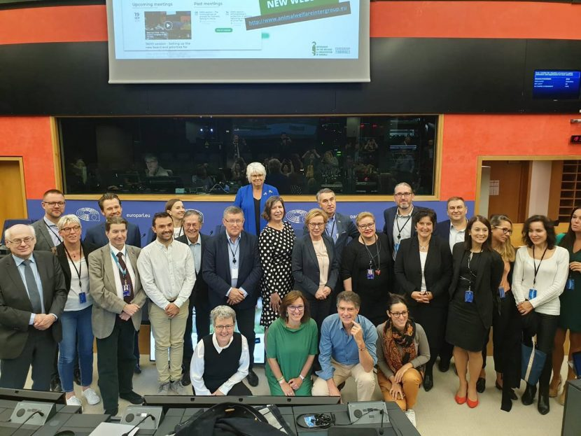 Емил Радев бе избран за заместник-председател на интергрупата за защита на животните в Европейския парламент