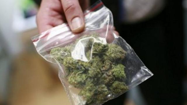 Безработен варненец се опита да се издържа с марихуана, начинанието завърши в съда