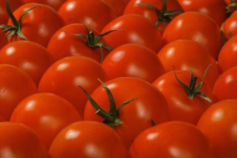 Какви са цените на основните хранителни стоки през последния месец?