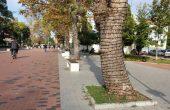 Коледното украсяване в центъра на Варна вече започна (снимки)