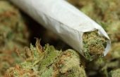 37-годишен хванат с марихуана