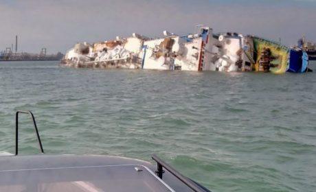 Кораб потъна край Шабла с 15 хиляди овце на борда (снимки)