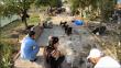 Четириноги затворници бяха открити край Варна (видео)